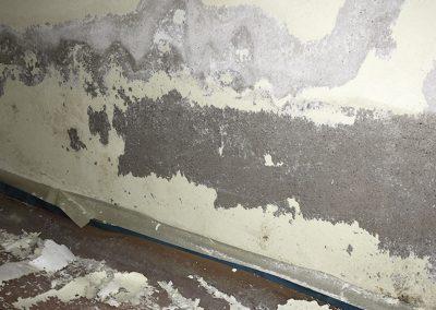 Feuchtigkeit zerstört Ihre Wandbeschichtung