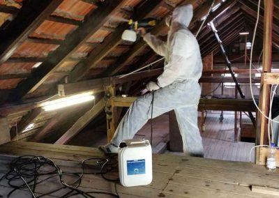 Sporen- und Myzelbekämpfung Dachstuhl