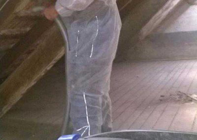 Absaugen von Sporen und loses Myzel Dachstuhl