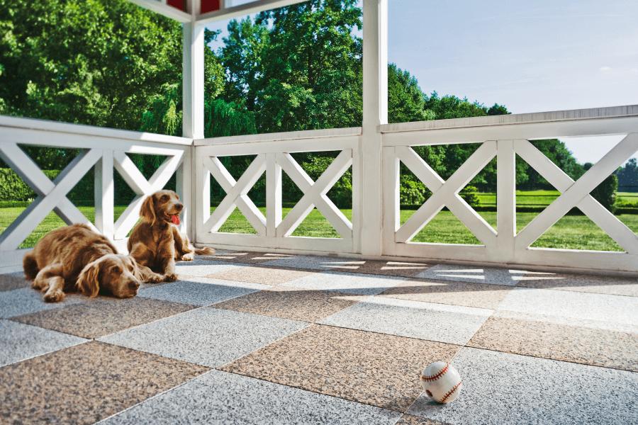 Balkonbelag Pedra mit Hunden